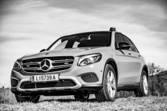 BFK_Mercedes2019_Kollinger-5