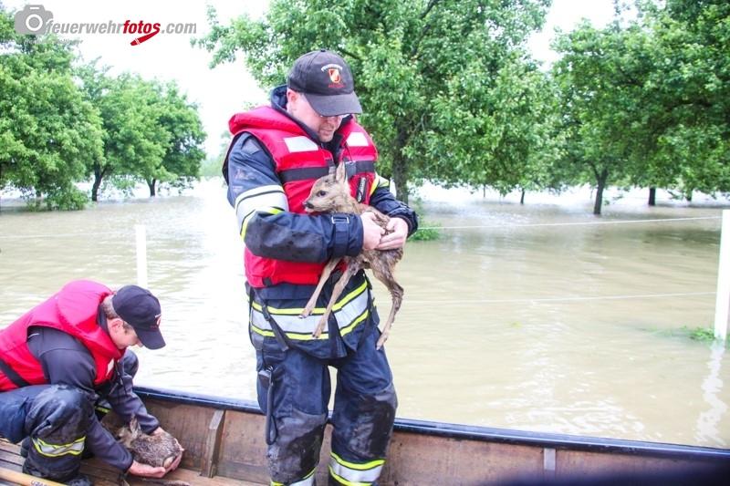 Hochwasser2013_087