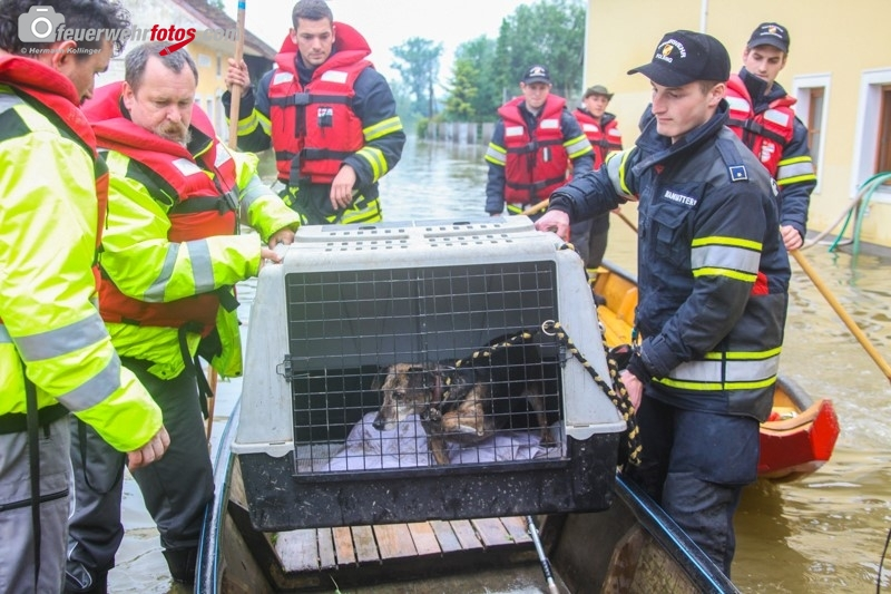 Hochwasser2013_317