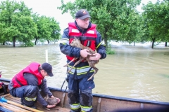 Hochwasser2013_086