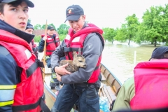 Hochwasser2013_089