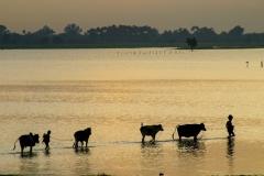 Myanmar2002_220