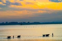 Myanmar2002_221