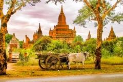 Myanmar2002_275