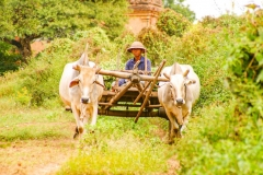 Myanmar2002_278