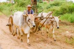 Myanmar2002_280