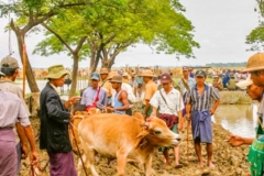 Myanmar2002_323