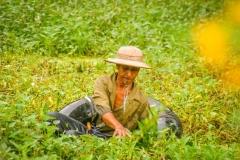 Myanmar2002_331