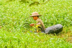 Myanmar2002_332