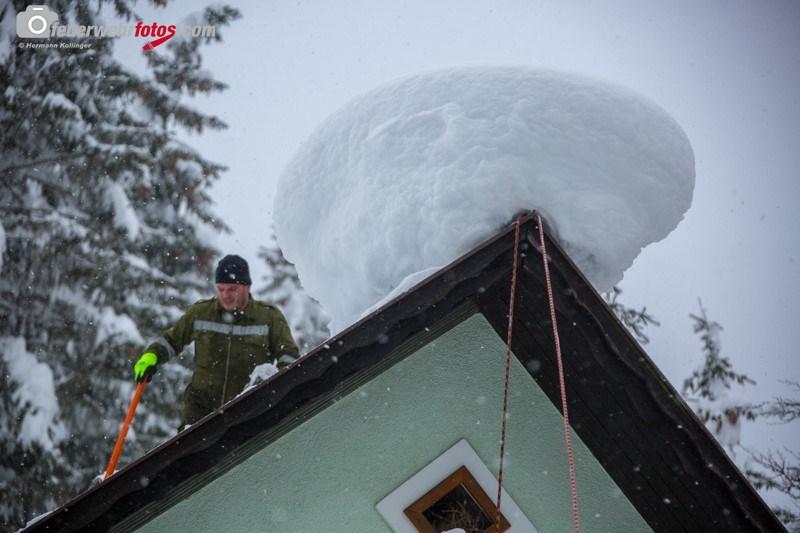 SchneeRosenau120119_Kollinger-31