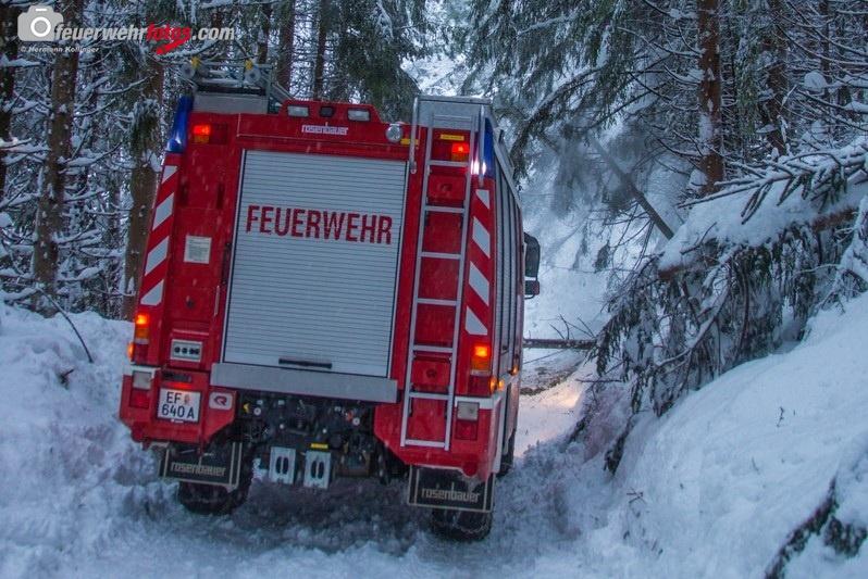 SchneeRosenau130119_Kollinger-16