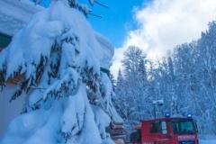SchneeRosenau110119_Kollinger-40