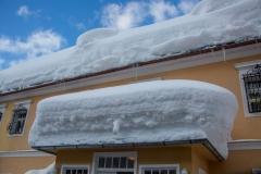 SchneeRosenau110119_Kollinger-77