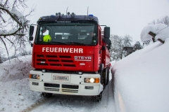 SchneeRosenau120119_Kollinger-84
