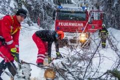 SchneeRosenau130119_Kollinger-21