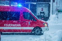 SchneeRosenau130119_Kollinger-3