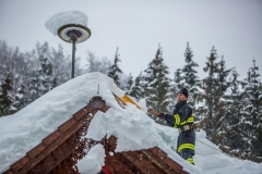 SchneeRosenau130119_Kollinger-45