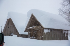 SchneeRosenau130119_Kollinger-57